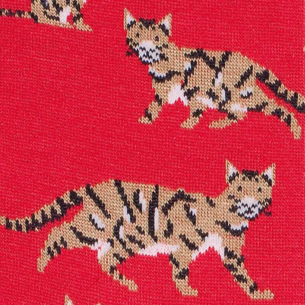 Calcetín de gatos detalle