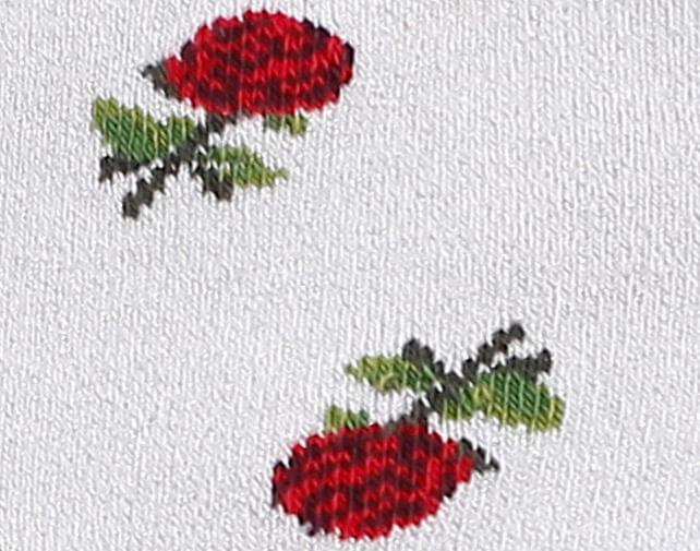 Rosas-rojas-brillantes-detalle