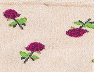 rosas-rosas-brillantes-silueta